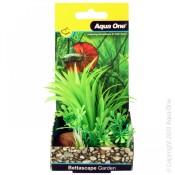 Betta Plants