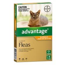 Advantage Cat 0-4kg 4pk