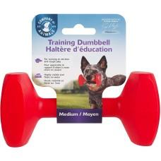 Company Of Animals Training Dumbbell Medium