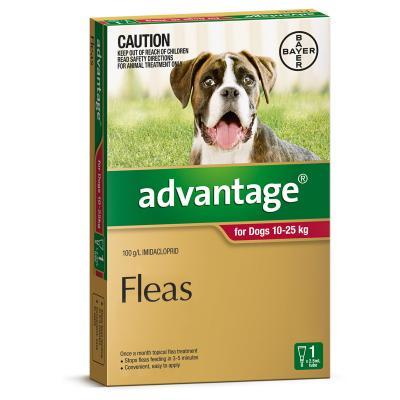 Advantage for Dogs 10-25kg 6pk