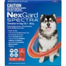 NexGard Spectra Chewables For Dogs 30.1-60kg 3 Pack