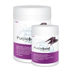 Lifewise Purple Boost Dog Supplement 180g