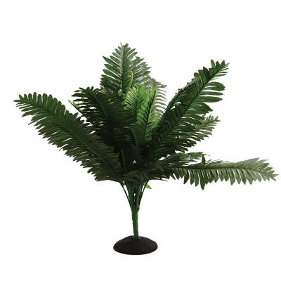 Reptile One Plant Bracken Fern 45cm