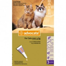 Advocate for Cats 4kg+ 6pk