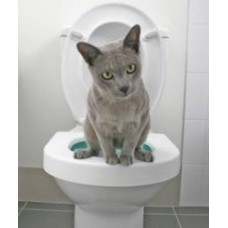 Cat Litter, Trays & Accessories