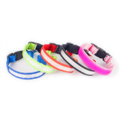 Doglite LED Collars & Pendants