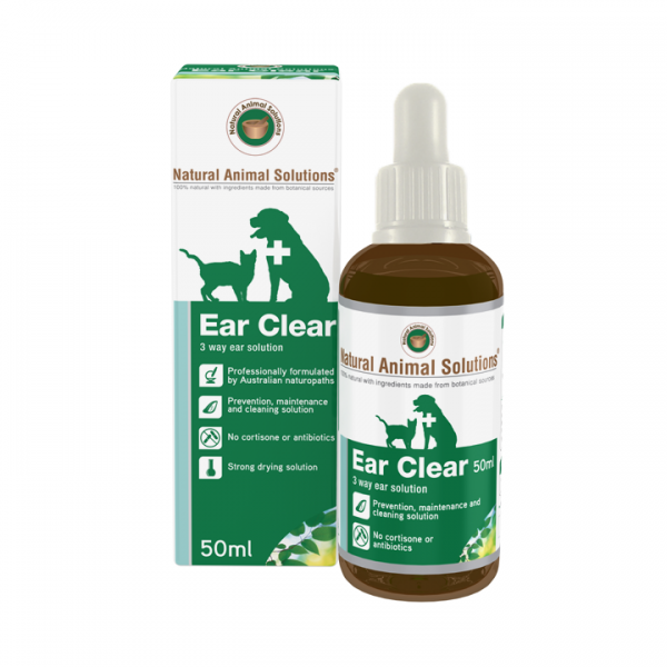 Natural Solutions For Dogs Ear Infection