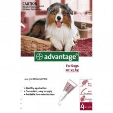 Advantage for Dogs 10-25kg 4pk