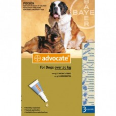 Advocate for Dogs 25kg+ 6pk